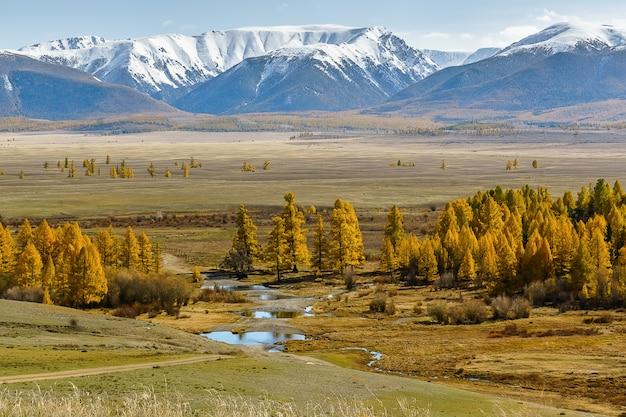 Paisagem bonita da montanha da república da montanha de altai, outono atrasado, rússia.