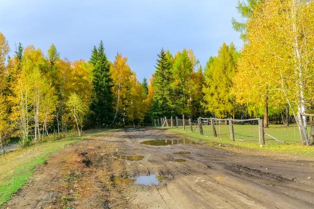 Paisagem bonita da república da montanha de altai, outono atrasado, rússia.