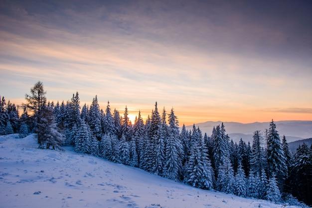 Paisagem bonita do inverno