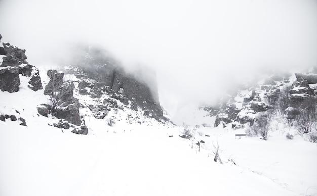 Paisagem bonita. inverno. dia de nevoeiro. montanha coberta de neve