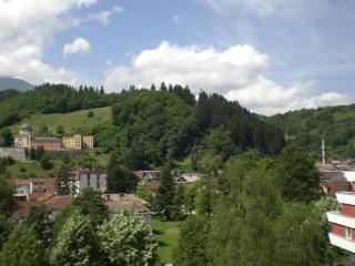 Paisagem bósnia, verde