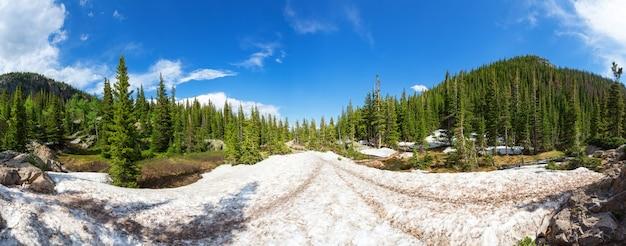 Paisagem cênica de montanhas com bosques perenes