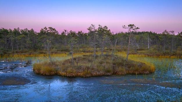 Paisagem colorida com pântano ao amanhecer. no início do outono no norte da europa