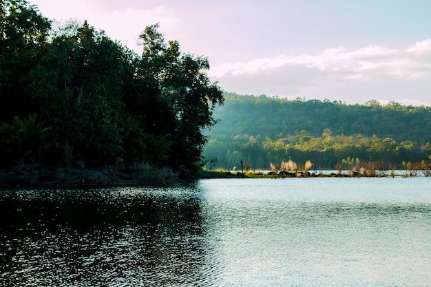 Paisagem com árvores de montanhas e um rio