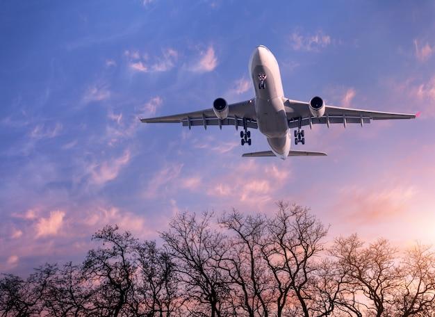 Paisagem com avião de passageiro branco