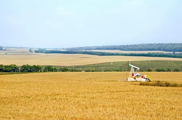 Paisagem com campos de grãos amarelos, bombas de óleo, floresta, céu