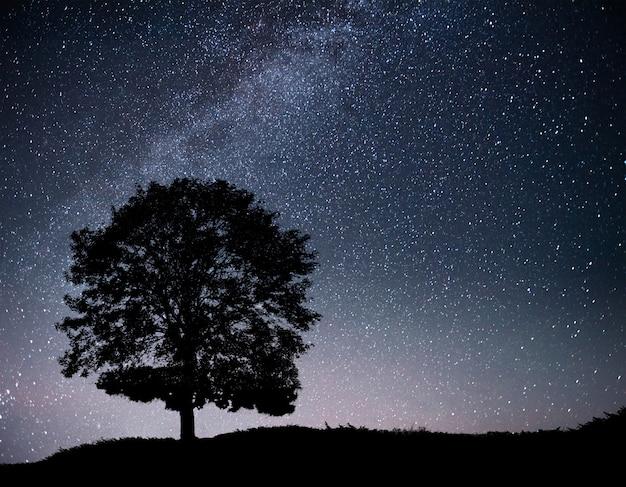 Paisagem com céu estrelado e silhueta da árvore na colina. via láctea com árvore solitária, estrelas cadentes.