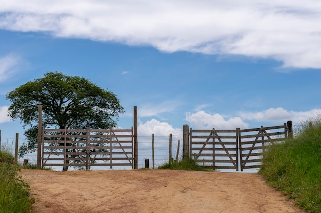 Paisagem com dois portões de madeira, árvore e céu azul