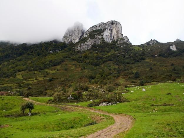 Paisagem com montanha e trilha