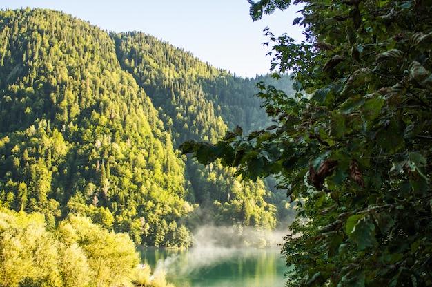 Paisagem com montanhas e árvores em primeiro plano