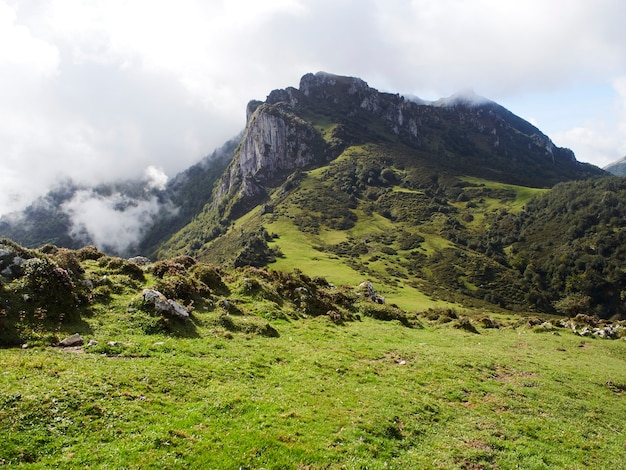 Paisagem com montanhas e vegetação em um dia nublado