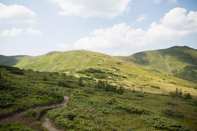Paisagem com montanhas verdes, floresta e céu azul