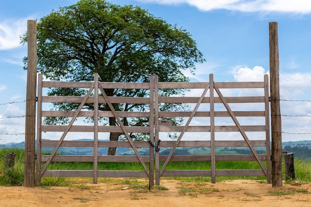 Paisagem com portão de madeira e árvore