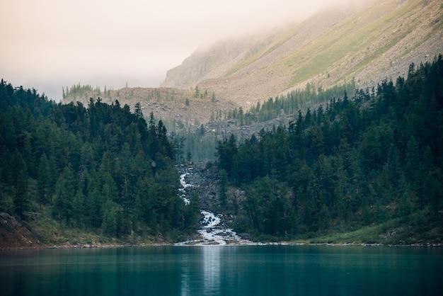 Paisagem com riacho de montanha desemboca em lago e floresta em meio a névoa