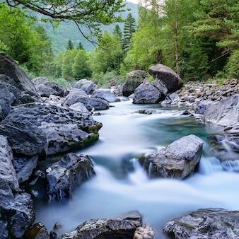 Paisagem com rio e floresta com árvores verdes. água cristalina sedosa e longa exposição. ordesa pyrenees.