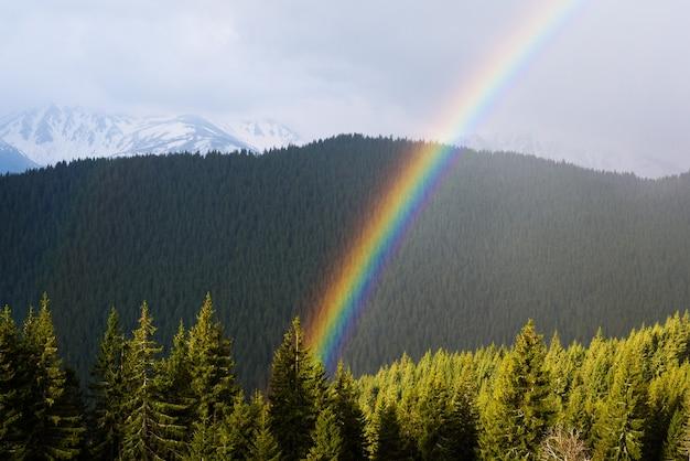 Paisagem com um arco-íris. primavera nas montanhas. dia ensolarado. floresta de abetos nas encostas