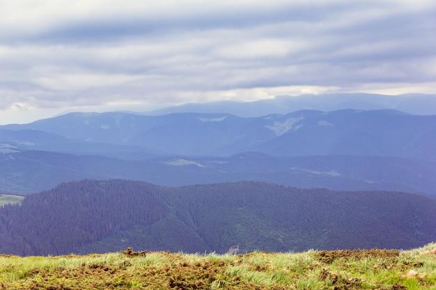Paisagem composta por montanhas cárpatos com grama verde