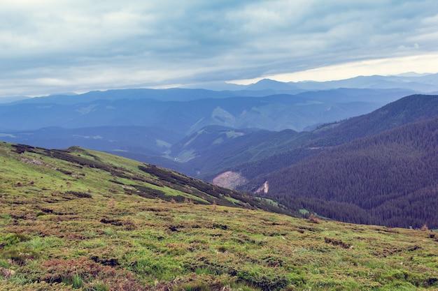 Paisagem composta por montanhas cárpatos com vale verdejante