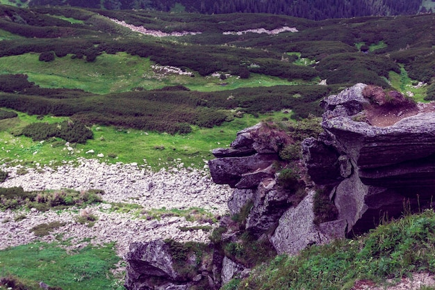 Paisagem composta por montanhas rochosas dos cárpatos