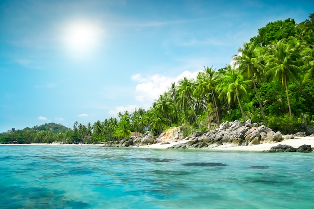 Paisagem da ilha tropical
