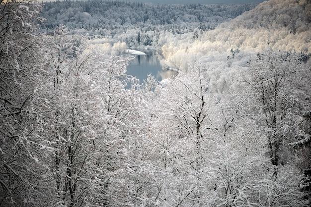 Paisagem da manhã de inverno em sigulda, letônia