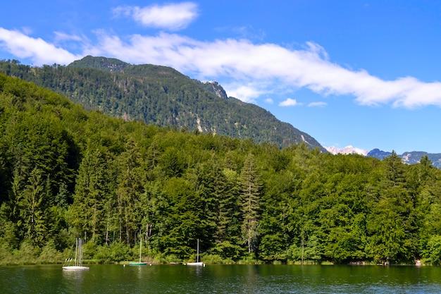 Paisagem da montanha, lago e cordilheira - lago bohinj, eslovênia, alpes.