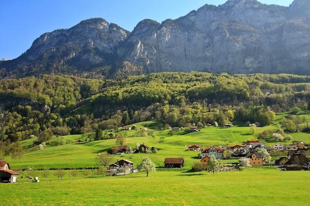 Paisagem da natureza da montanha, do esclarecimento da floresta e do campo verde acima de uma vila em suíça.