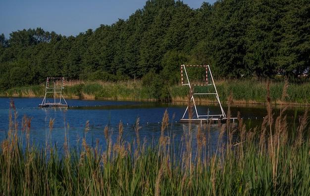 Paisagem da natureza holandesa em torno de amesterdão