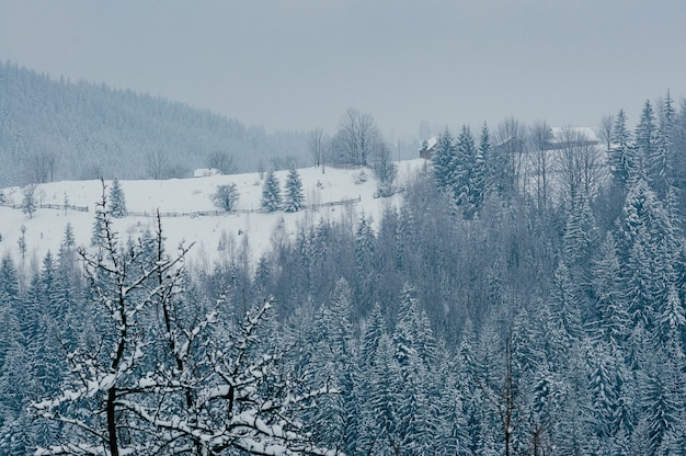 Paisagem de aldeia de inverno nevado