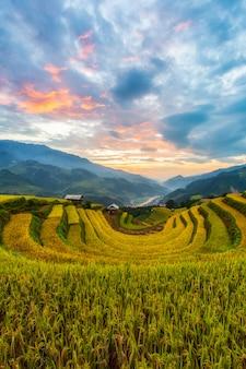 Paisagem de campo de arroz em terraços de mu cang chai Foto Premium