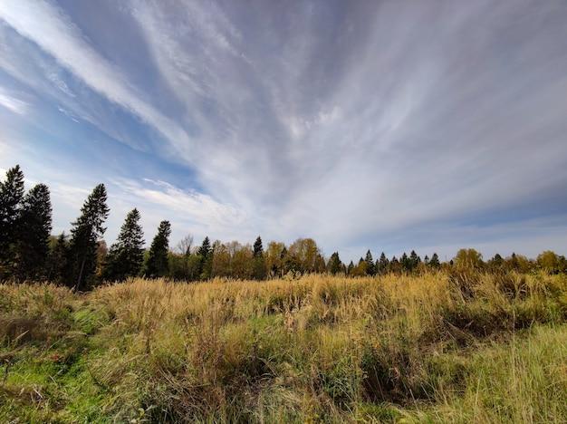 Paisagem de campo de outono