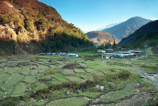 Paisagem de campos de arroz verde nas colinas do nepal.