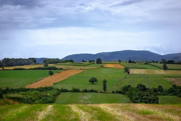 Paisagem de campos em uma vila cercada por colinas cobertas por florestas sob um céu nublado