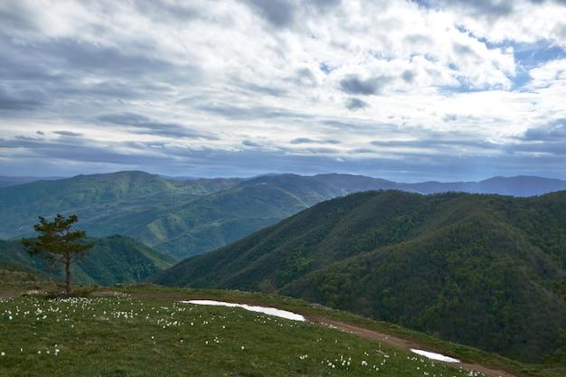 Paisagem de colinas cobertas de verde sob o céu nublado durante o dia