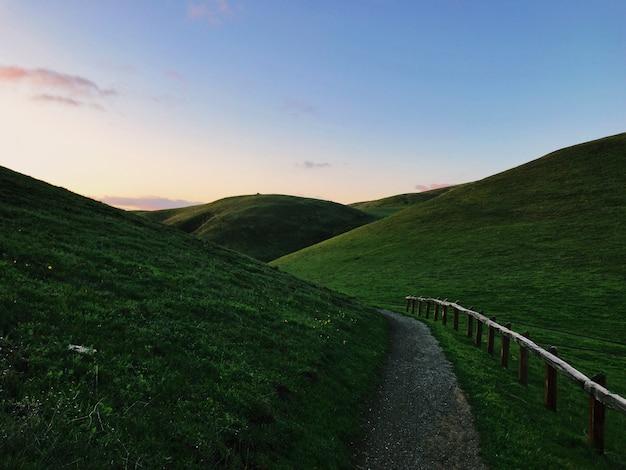 Paisagem de colinas verdes