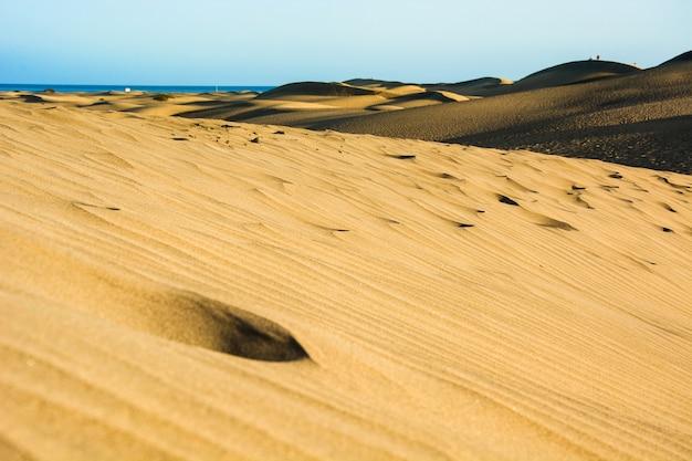 Paisagem de dunas de areia no verão