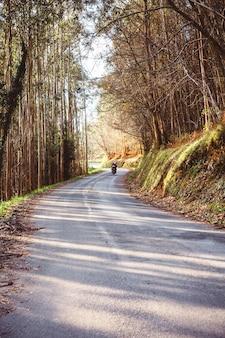 Paisagem de estrada na floresta no outono com casal andando de moto no fundo