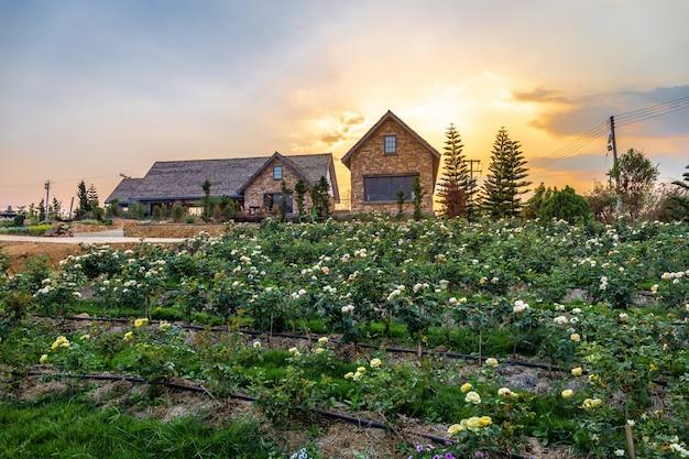 Paisagem de florescência rosa graden com bela casa na montanha sob