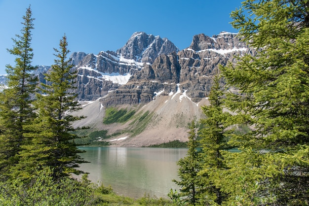 Paisagem de floresta do canadá com grande montanha ao fundo