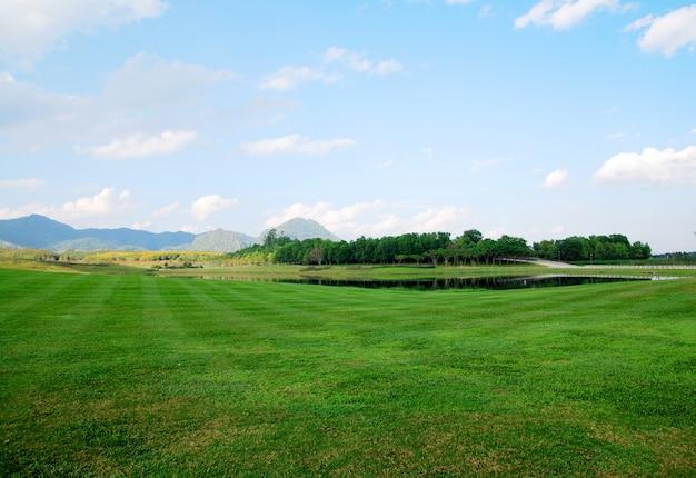 Paisagem, de, grama verde, campo, com, nuvem, céu azul montanha, fundo, em, singha, parques, tha