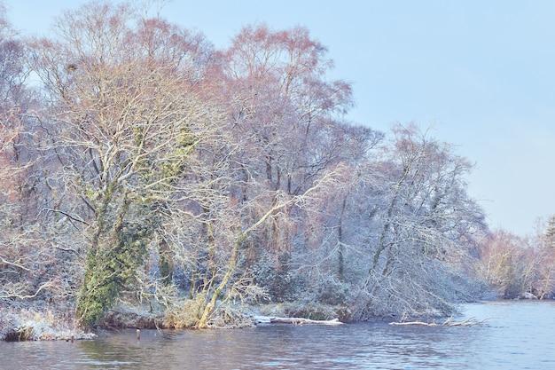 Paisagem de inverno à beira do lago. árvores cobertas de geada na região central da irlanda