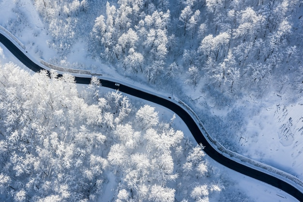 Paisagem de inverno aérea de uma estrada sinuosa de montanha em uma floresta coberta de neve iluminada por um sol nascente