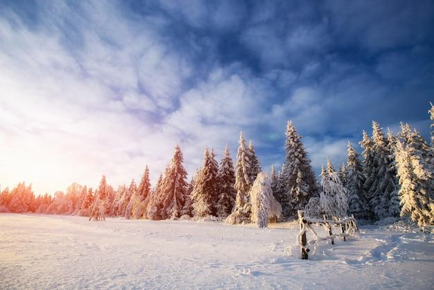 Paisagem de inverno. aldeia da montanha