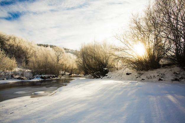 Paisagem de inverno - árvores perto do rio e do sol