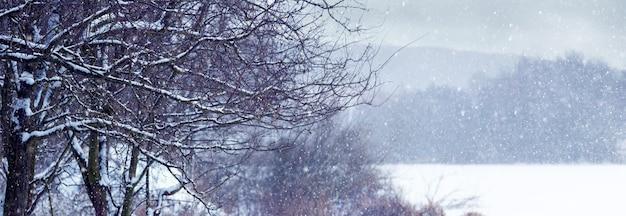 Paisagem de inverno com árvores cobertas de neve perto do rio durante uma nevasca