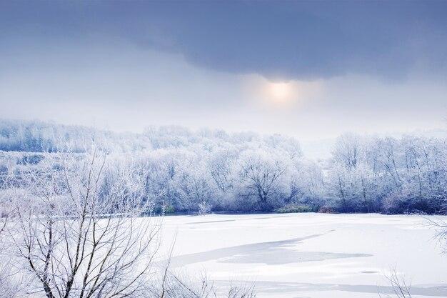 Paisagem de inverno com árvores cobertas de neve perto do rio e o céu com nuvens densas nas quais o sol brilha