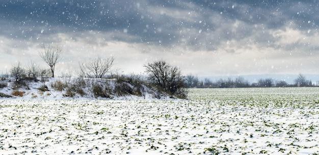 Paisagem de inverno com campo nevado e céu nublado dramático durante a queda de neve
