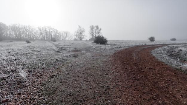 Paisagem de inverno com estrada de terra totalmente congelada e nevoeiro intenso escondendo o horizonte. riaza segovia espanha. europa.