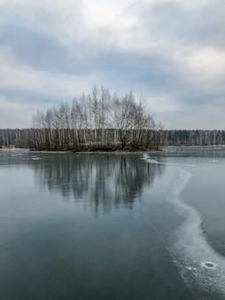 Paisagem de inverno com linhas de bolhas de ar gelado no lago congelado e ilha com árvores sem folhas à distância