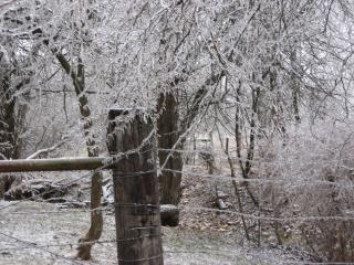 Paisagem de inverno, con0207